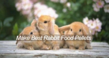 make best rabbit food pellets with animal feed mill