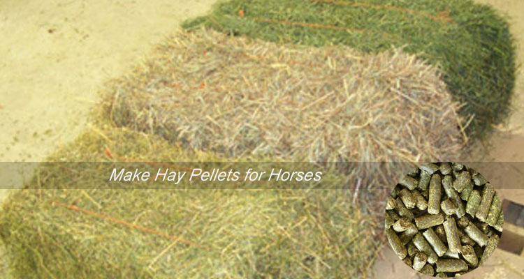make hay pellets for horses