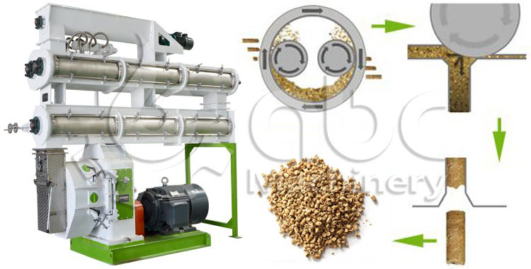 pig feed pellet machine for sale