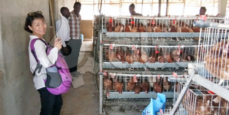 we visit poultry feed production client in Nigeria